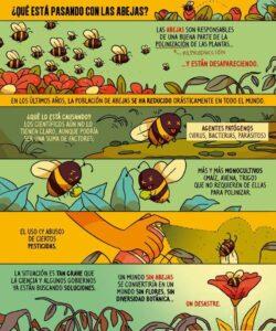 qué está pasando con las abejas