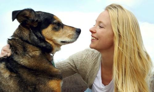 caracteristicas-de-los-perros-utiles-para-el-hombre