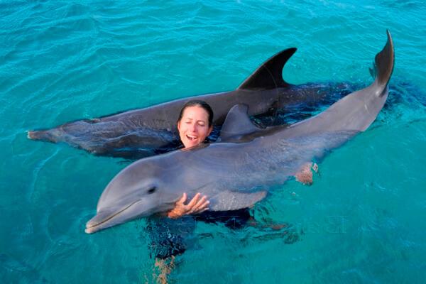 cuanto pesa un delfin al nacer