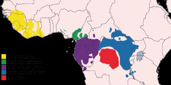Hábitat del chimpancé - Zonas dónde habita el chimpancé en África