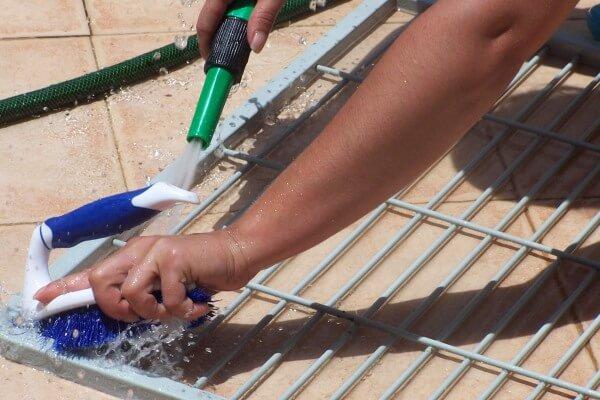 cómo limpiar jaula de cotorras