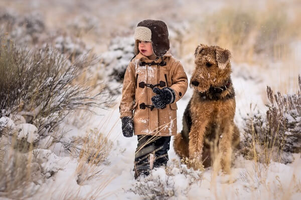 comportamiento airedale terrier