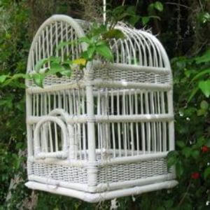 tipos de jaulas para periquitos