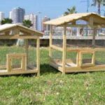Cómo construir una pajarera para cacatúas