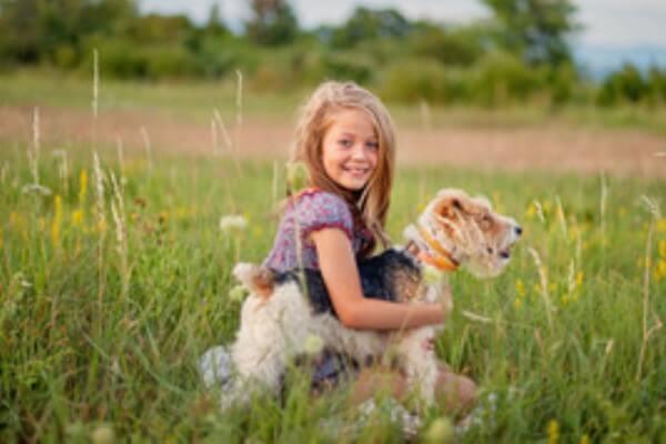 comportamiento niños fox terrier