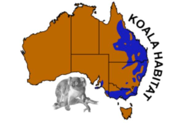 hábitat del koala