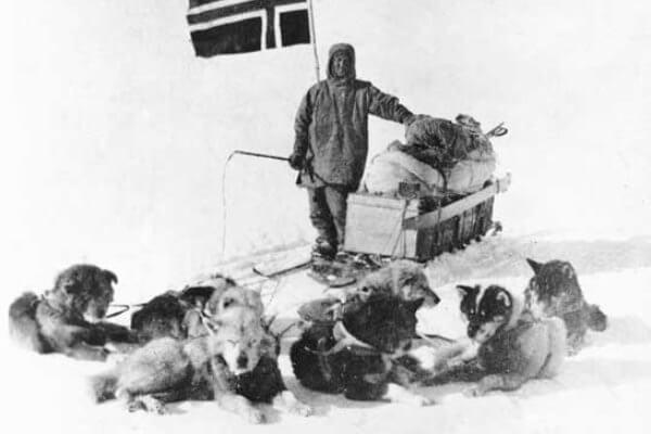 origen de la raza de perros samoyedos