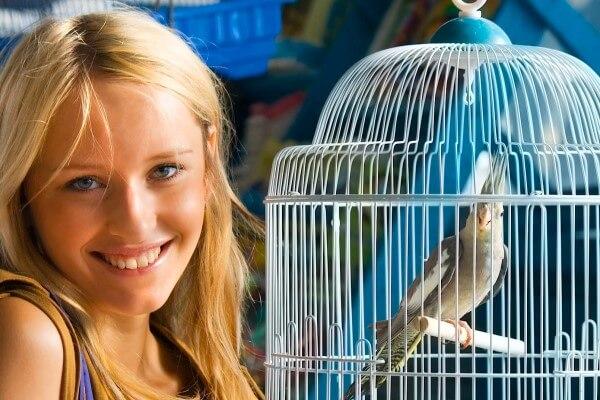 La llegada del ave exótica a casa