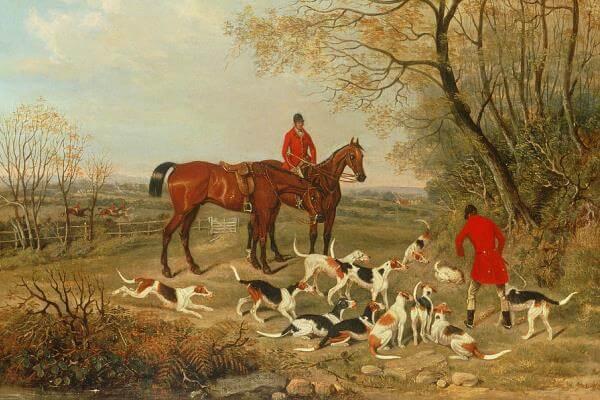 cuál es la historia del perro jack russell