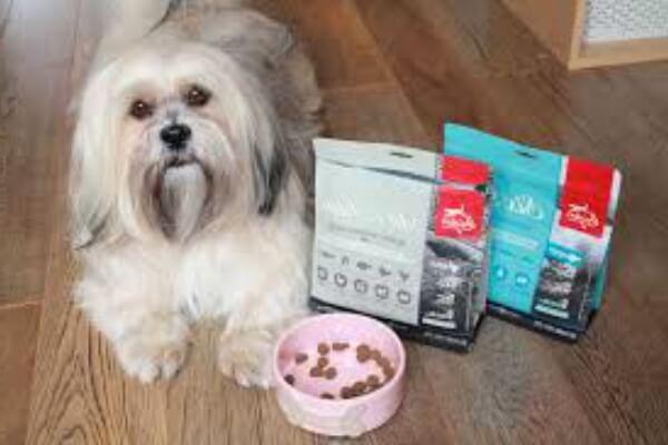 cómo alimentar perro lhasa apso