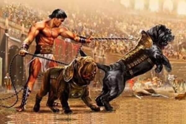 origen raza de perro mastiff