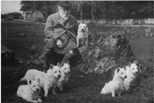 historia del perro West Highland White terrier