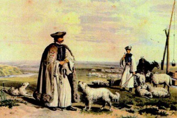 historia perro kuvasz
